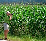 Len taking Candid Photos of Corn