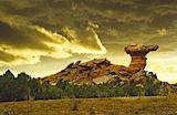 Camel Rock.jpeg