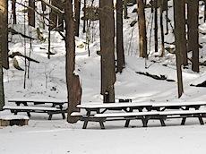 more snow picnic.jpg