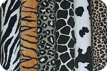 ANIMAL PRINTS main.jpg